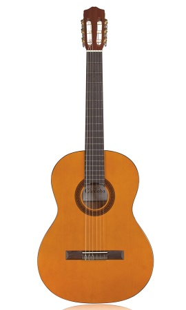 Cordoba Protege C1 Classical Guitar, Natural